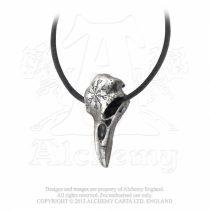Alchemy Helm Of Awe Ravenskull nyaklánc